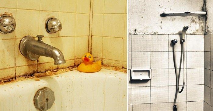 Ванна или душевая кабина: выбор очевиден! Вот что по этому поводу говорят опытные архитекторы и дизайнеры.