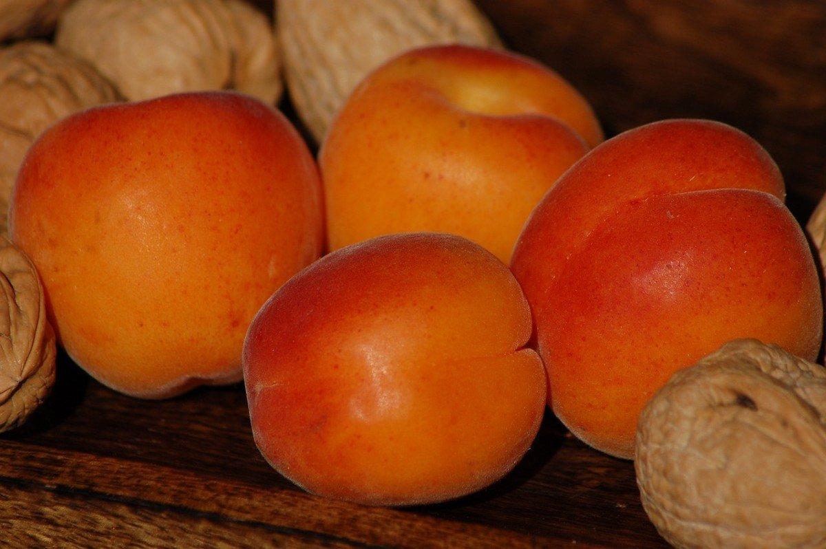 Абрикосовое варенье с орехами «Щедрое», любимое высшим дворянством Кулинария,Абрикосы,Варенье,Орехи,Сладости