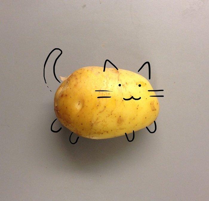 как выбрать хорошую картошку