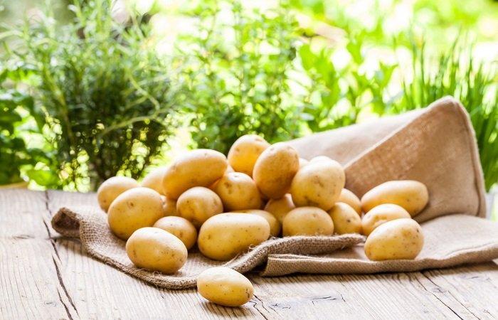 как выбрать молодой картофель