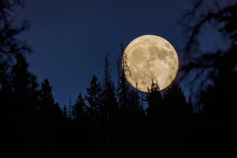 влияние луны на человека сегодня
