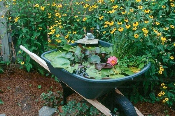 идеи для дачи и огорода