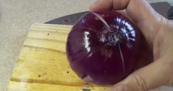 Она разрезала луковицу и полила ее маслом с уксусом. Результат — вкуснейшая водная лилия!