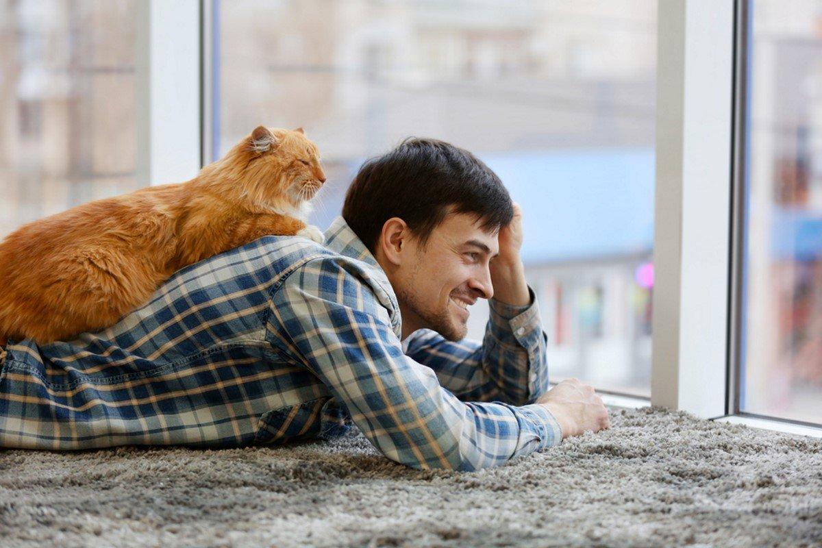 Как нужно правильно хвалить кота за хорошее поведение