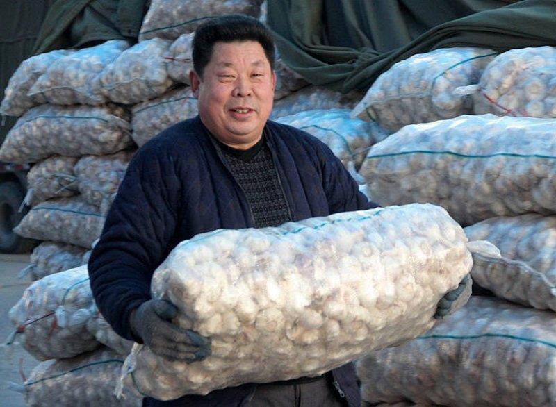 вред китайского чеснока