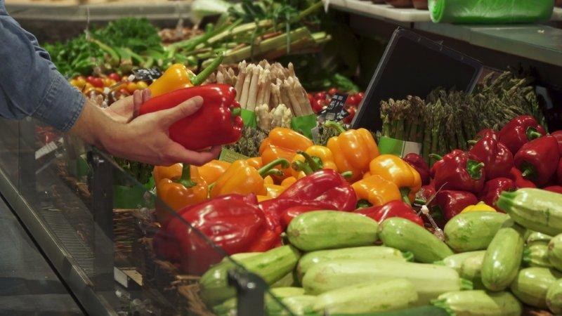 польза и вред от кабачков