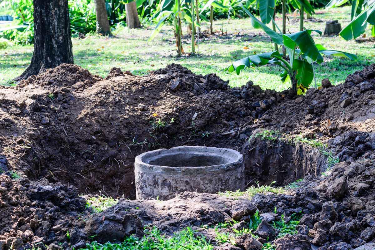 Почему дачники массово отказываются от выгребной ямы на участке