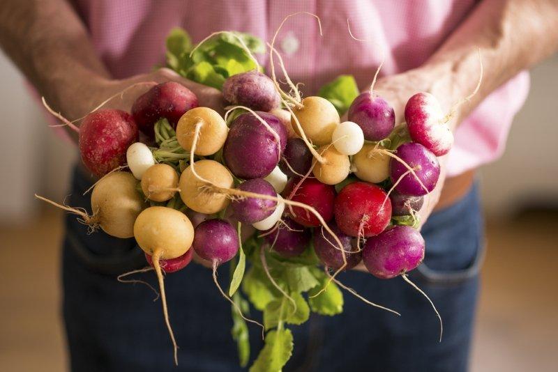 Опытный огородник высаживает редис только в яичных лотках! Каждый день в доме свежий салат.