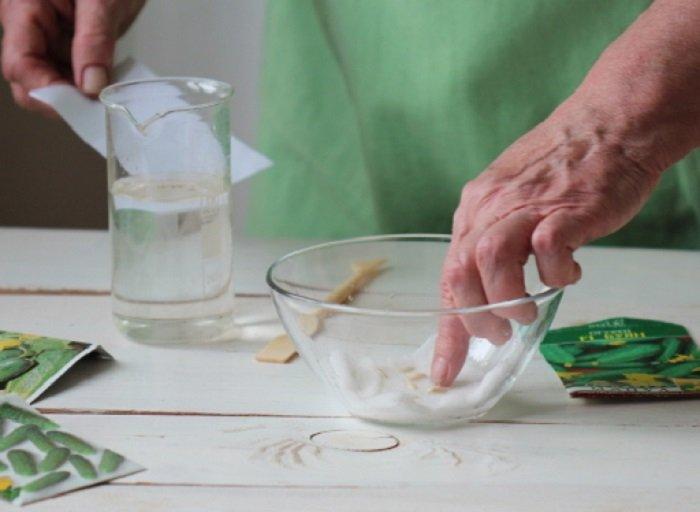 использование янтарной кислоты для растений