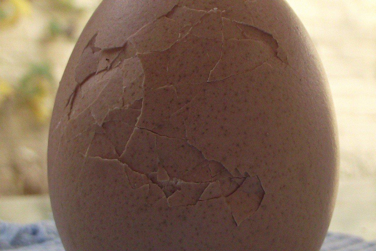 хранить яйца в банке