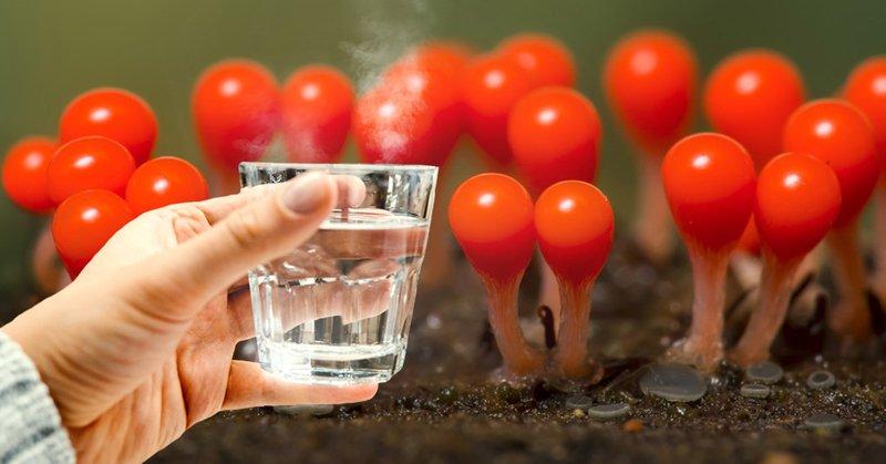 зачем пить воду