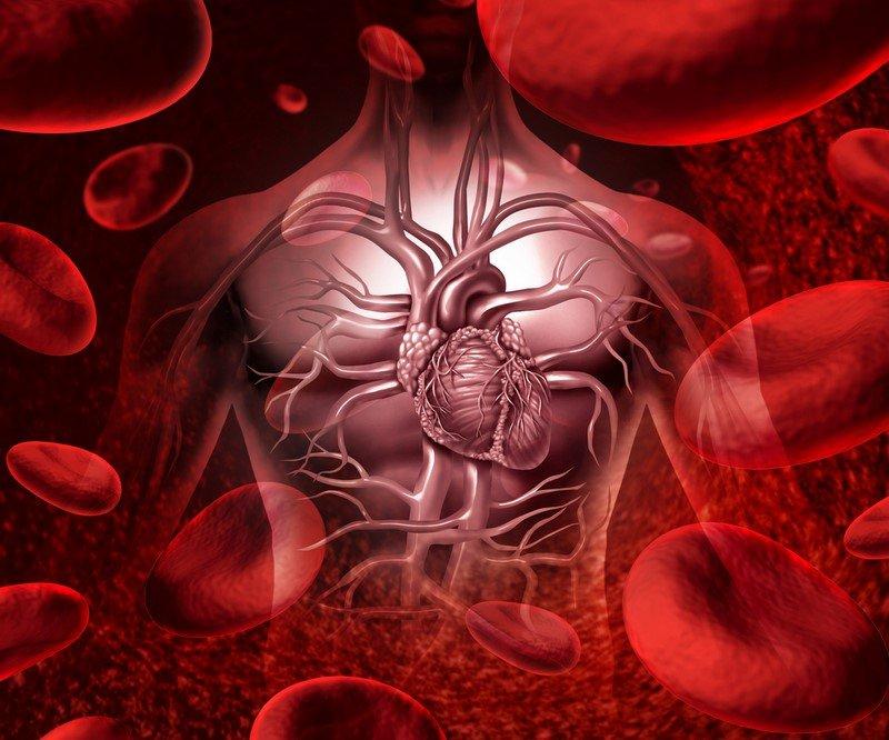 сдавать кровь полезно