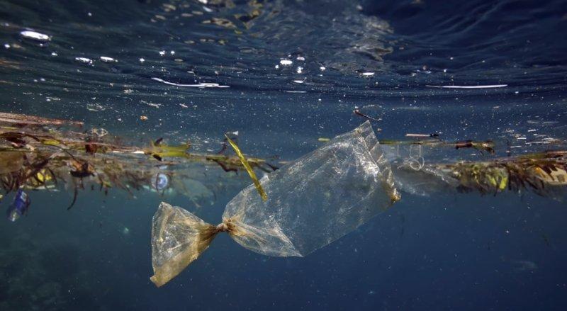 загрязнение природы мусором