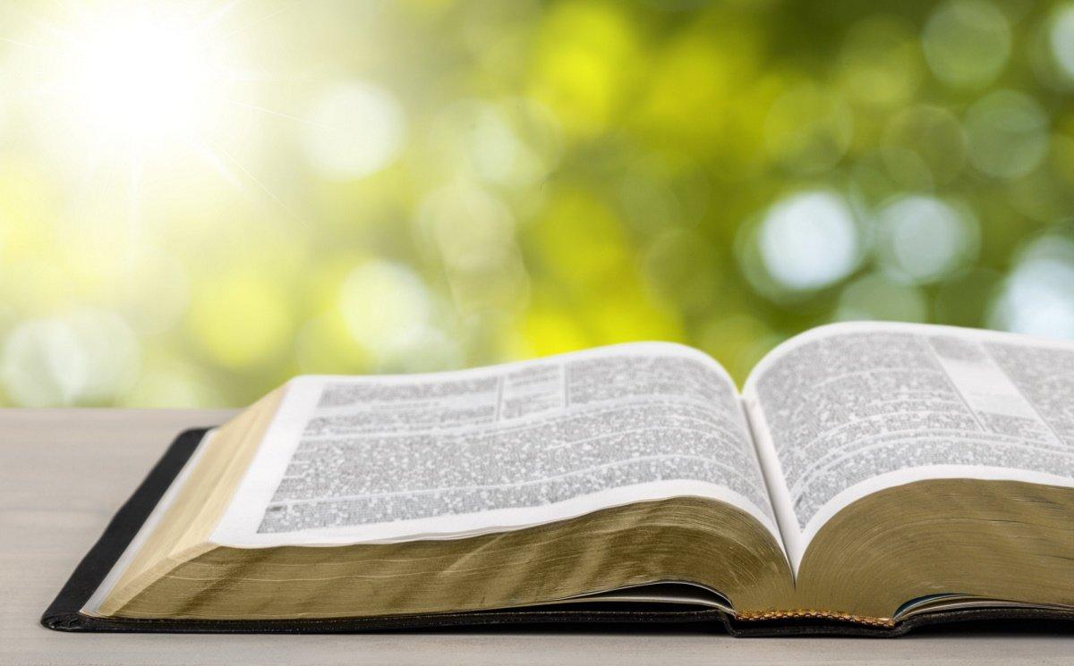 Толкование Андрея Ткачева известной строчки «подставь левую щеку»