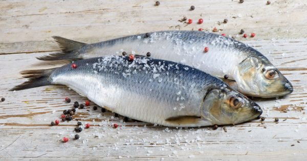 Two herrings on a wooden table