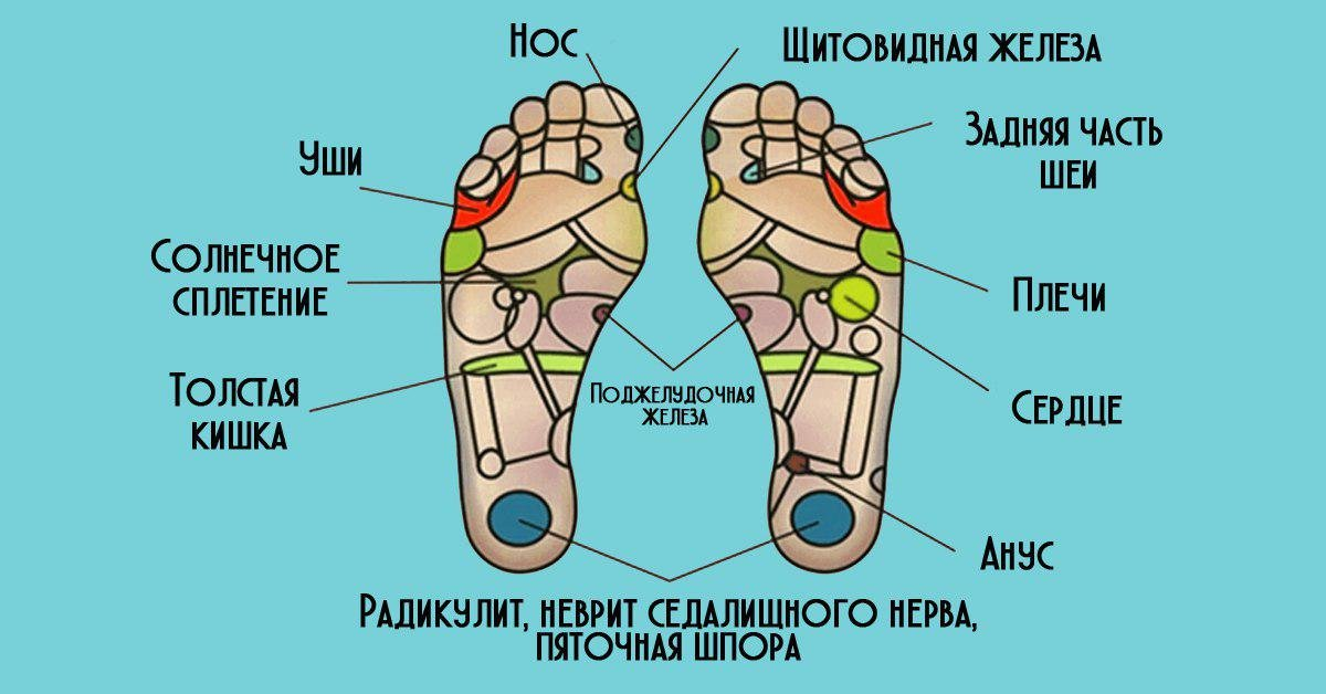 Здоровые ноги: несколько самых интересных фактов