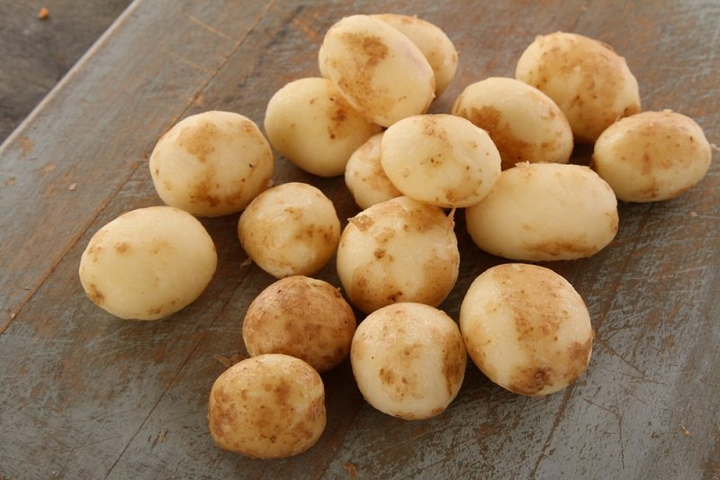 молодая картошка фото